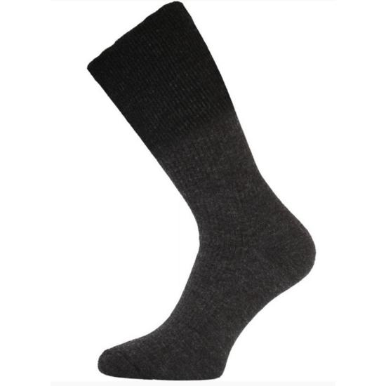 Ponožky Lasting WRM 816 šedé