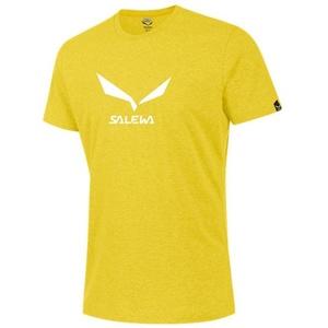 Tričko Salewa SOLIDLOGO 2 CO M S/S TEE 25785-5730, Salewa