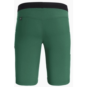 Nohavice Salewa Agner LIGHT DST M SHORTS 27380-5941, Salewa