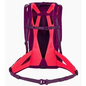 Batoh Salewa Alp Trainer 20 WS 1262-6870, Salewa